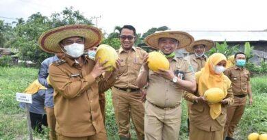 Bagus Santoso Canangkan Bangun Dunia Pertanian di Bengkalis 4